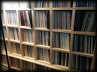 Parts of the Mike Maurro record collection
